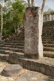 Calakmul maya ruins Mexico. Mayan stela with circular shallow rock in front at Calakmul Mexico stock photos