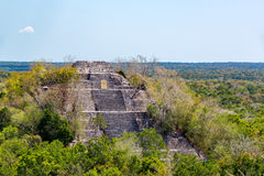 Calakmul, Mexico Pyramid. View of the pyramid known as structure one rising above the rain forest in Calakmul, Mexico Stock Photography