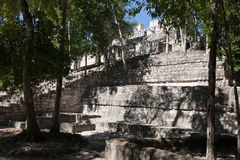 Calakmul - oude mayan stad in Mexico Royalty-vrije Stock Afbeeldingen