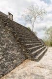 Calakmul ruins in Mexico stock photos