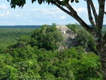 Calakmul Temple I. View of Calakmul Temple I from on top of Temple 5 royalty free stock images