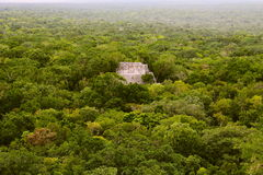 Calakmul XII Royalty Free Stock Images