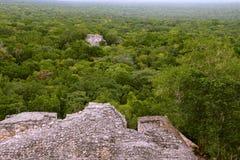 Calakmul XIII Photos libres de droits