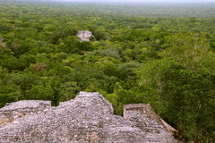 Calakmul XIII royalty free stock photos