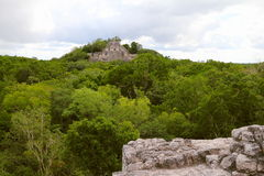 Calakmul XV. Pyramid rounded by the rain forest, as part of the mayan archaeological site of calakmul, in campeche, mexico royalty free stock image