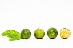 Calamansi lime with green leaf on white background Royalty Free Stock Photography