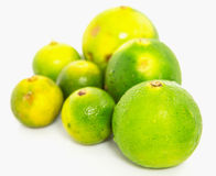 Calamansi and Lime I Royalty Free Stock Image