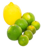 Calamansi, Lime and Lemon II Royalty Free Stock Photography