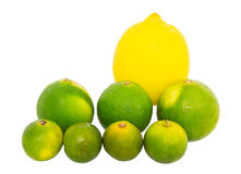 Calamansi, Lime and Lemon Royalty Free Stock Image