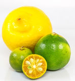 Calamansi, Lime and Lemon VI Royalty Free Stock Photography