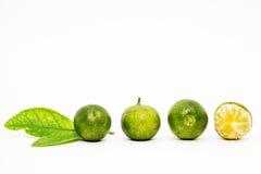 Calamansi limefrukt med det gröna bladet på vit bakgrund Royaltyfri Fotografi