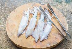 Calamar. Fotos de Stock Royalty Free