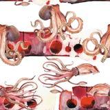 Calamar da aquarela, polvo Imagem de Stock Royalty Free