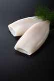 Calamar do marisco Imagens de Stock Royalty Free