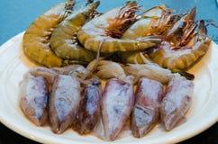 Calamar e camarão Fotografia de Stock