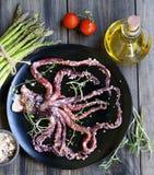 Calamar fresco com um aspargo fotos de stock