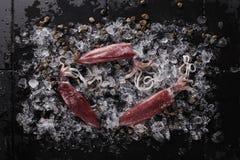 Calamar fresco en el hielo listo para el cocinero Imagen de archivo