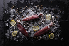 Calamar fresco en el hielo y el limón Foto de archivo libre de regalías
