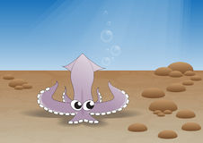 Calamar fresco no mar Fotos de Stock Royalty Free