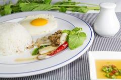 Calamar fritado picante com folhas da manjericão Fotografia de Stock Royalty Free