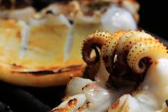 Calamar grelhado cozinhado no macro do fogão do BBQ imagem de stock royalty free