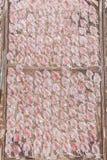 Calamar secado, calamares tradicionales que secan en a pescadores idílicos VI fotografía de archivo libre de regalías