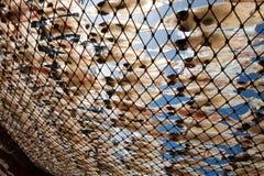 Calamar secado en Tailandia Foto de archivo libre de regalías