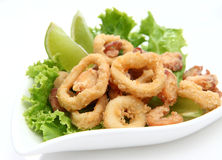 Calamari Foto de Stock Royalty Free