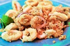 calamari Royaltyfri Foto