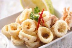 calamari Immagini Stock