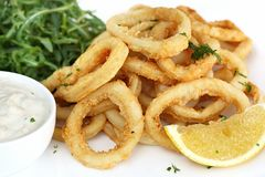 Calamari. Fried calamari, with arugula salad, tartare sauce, and lemon royalty free stock photos