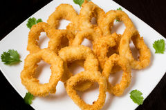 Calamari. Appetizing calamari served parsley on white plate Stock Photography