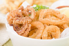 Calamari Stock Photo