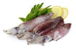 Calamari frais avec le citron Photographie stock