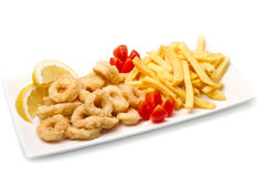 Calamari fried and potatoes. A dish with calamari fried and potatoes Stock Image
