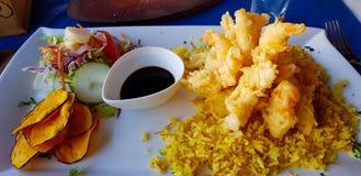 Calamari fritado, Ilha de Páscoa, o Chile fotografia de stock