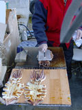 Calamari fritado sob a pressão Imagem de Stock