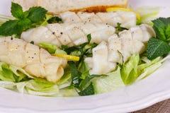 Calamari with green salad Royalty Free Stock Photos