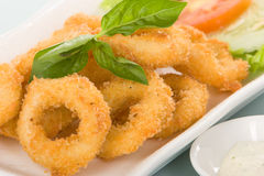 Calamari or onion ring Stock Images