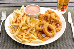 Calamari rings with french fries and sauce Stock Images