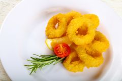 Calamari rings. Fried Calamari rings with rosemary and lemon Stock Photography