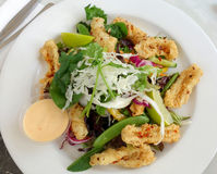 Calamari salad Royalty Free Stock Photo