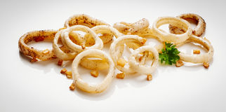Calamari sautéed in garlic. Image of delicious calamari sautéed in garlic to apply to label design Royalty Free Stock Photo