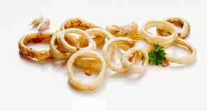 Calamari sautéed in garlic. Image of delicious calamari sautéed in garlic to apply to label design Stock Photography