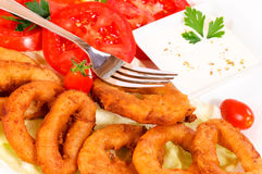 Calamari time Royalty Free Stock Image