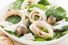Calamari With Spinach Royalty Free Stock Images