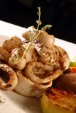 Calamaricirklar Royaltyfri Fotografi