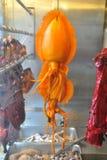Calamaro arancione Immagini Stock Libere da Diritti