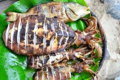 Calamaro arrostito e pesce sulle foglie verdi Immagine Stock