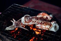 Calamaro arrostito o polipo al mercato tailandese dei frutti di mare Immagini Stock